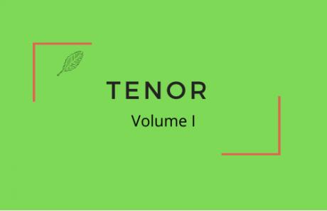 Arie Tenor Klavierbegleitung jugend musiziert